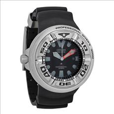 Citizen Professional Diver